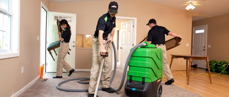 Bellevue, WA cleaning services